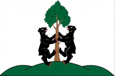 Flagge für die Stadt Přimda