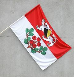 Flagge für den Außenbereich der Gemeinde Rynoltice