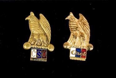 Orelské, sokolské odznaky